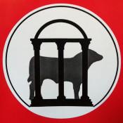 UGA EPD Bull
