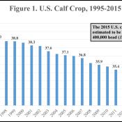 U.S. Calf Crop